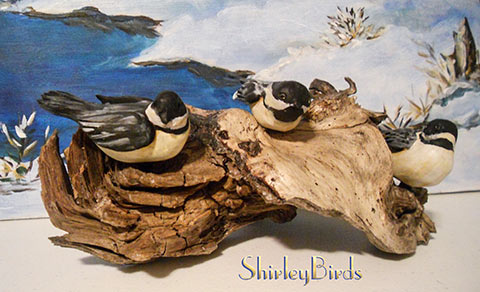 2010-Black Capped Chickadees by ShirleyBirds