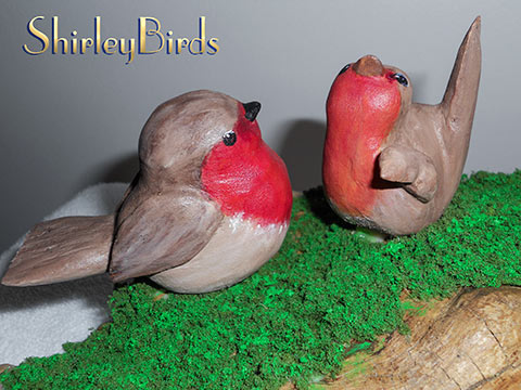 2013-English Robins-Detail by ShirleyBird-3