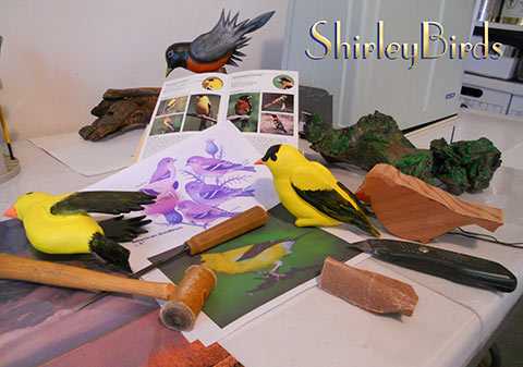 2015-11-24 American Goldfinchs in Process-2 by ShirleyBirds-1