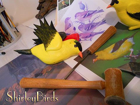 2015-11-24 American Goldfinchs in Process-3 by ShirleyBirds-3