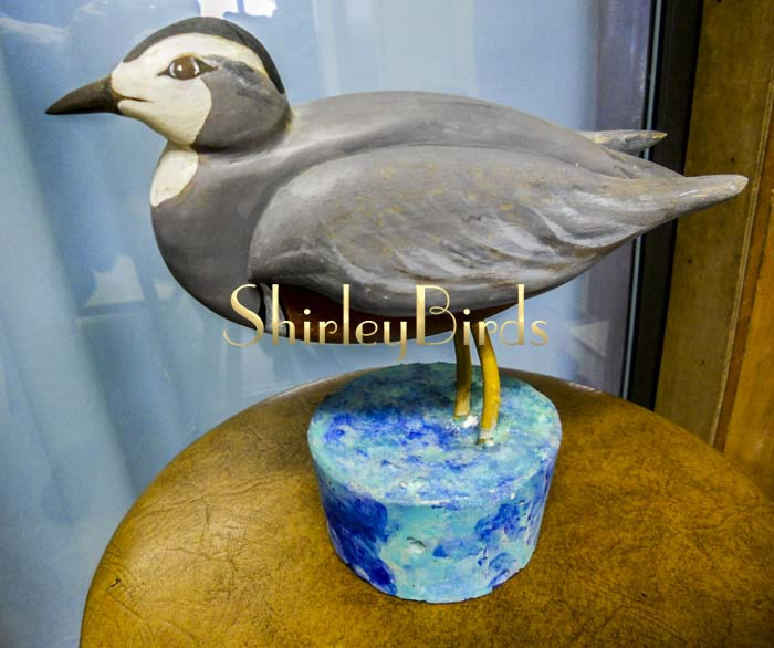 2000 ShoreBird cocreated by Dad and Mon who makes ShirleyBirds