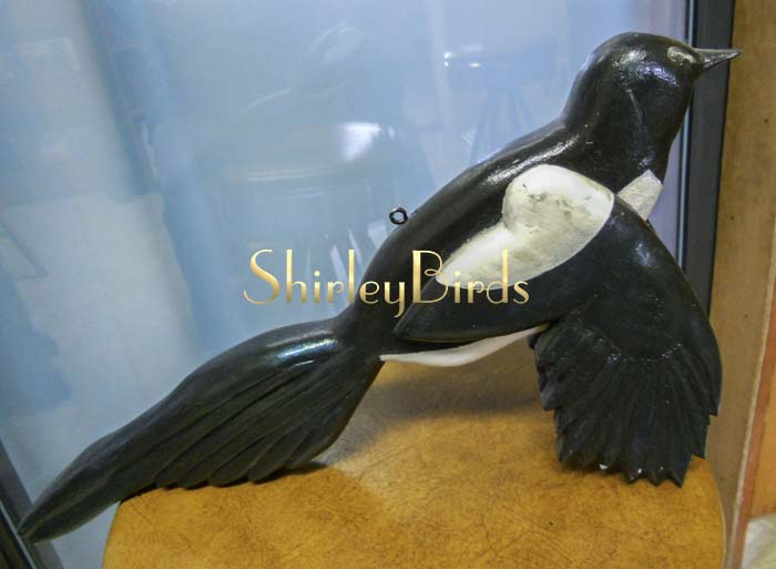 2010 Magpie by ShirleyBirds
