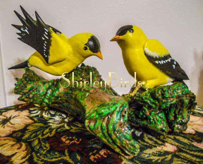 2015-12-01 American Goldfinch-Finished-by-ShirleyBirds2