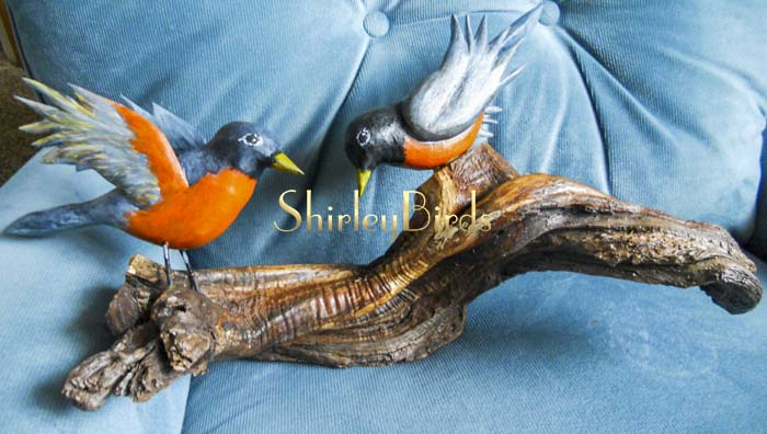 2015-12-10 American Robins with New Wood by ShirleyBirds2
