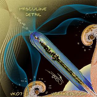 VK07 Masculine Detail 2